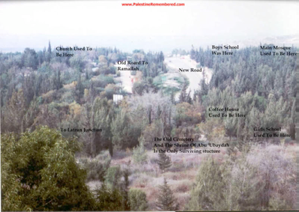 Imwas in 1988 after the JNF forestation has hidden most - but not all - of the village