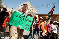 peace-in-palestine